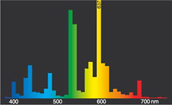 Spektrum 1