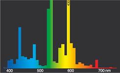 Radium Ralux rx-T//E 26W//840 31311253 GX24q-3 4000K